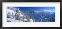 Framed Alpine Scene, Bavaria, Germany