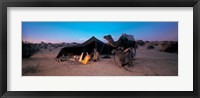 Framed Bedouin Camp, Tunisia, Africa