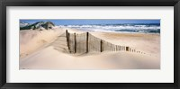 Framed Outer Banks, North Carolina, USA