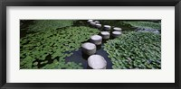Framed Water Lilies In A Pond, Helan Shrine, Kyoto, Japan