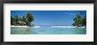 Framed Palm trees on the beach, Tikehau, French Polynesia