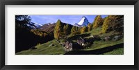 Framed Low angle view of a mountain peak, Matterhorn, Valais Canton, Switzerland