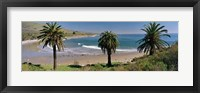 Framed High angle view of palm trees on the beach, Refugio State Beach, Santa Barbara, California, USA