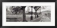 Framed Trees in front of a building, Alameda Vieja, Jerez, Cadiz, Spain