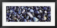 Framed Close-up of pebbles, Sandymouth Beach, Cornwall, England