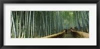 Framed Stepped walkway passing through a bamboo forest, Arashiyama, Kyoto Prefecture, Kinki Region, Honshu, Japan