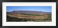 Framed Road from Cape Town to Namibia near Vredendal, Western Cape Province, South Africa