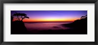 Framed Silhouette of Lone Cypress Tree on a cliff, 17-Mile Drive, Pebble Beach, Carmel, Monterey County, California, USA