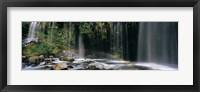 Framed Waterfall in Dunsmuir, Siskiyou County, California