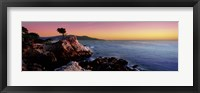 Framed Silhouette of Lone Cypress Tree at a coast, 17-Mile Drive, Carmel, Monterey County, California, USA