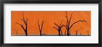 Framed Dead trees by red sand dunes, Dead Vlei, Namib-Naukluft National Park, Namibia