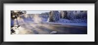 Framed Snow covered laden trees, Dal River, Sweden