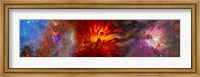 Framed Hubble galaxy with red chrysanthemums