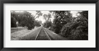 Framed Railroad track, Napa Valley, California, USA