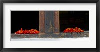 Framed Red chilies drying on window sill, Paro, Bhutan