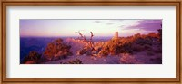 Framed Rock formations with a river, Desert View Watchtower, Desert Point, Grand Canyon National Park, Arizona