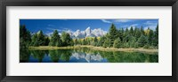 Framed Reflection of trees in water with mountains, Schwabachers Landing, Grand Teton, Grand Teton National Park, Wyoming, USA