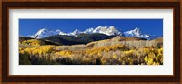 Framed USA, Colorado, Rocky Mountains, aspens, autumn