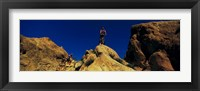 Framed Mountain Bikers CA USA