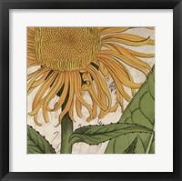 Framed Joyful Bloom I