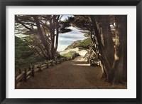 Framed Big Sur