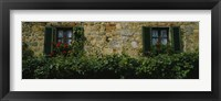 Framed Flowers on a window, Monteriggioni, Tuscany, Italy