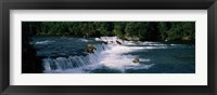 Framed Bears fish Brooks Fall Katmai AK