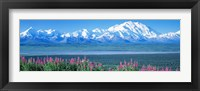 Framed Mountains & Lake Denali National Park AK USA