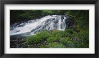 Framed Waterfall in the forest, Mt Rainier National Park, Washington State, USA