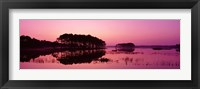 Framed Panoramic View Of The National Forest During Sunset, Chincoteague National Wildlife Refuge, Virginia, USA