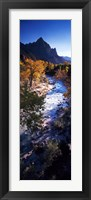 Framed High angle view of a river flowing through a forest, Virgin River, Zion National Park, Utah, USA