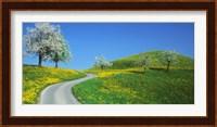 Framed Winding Road Canton Switzerland