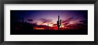 Framed Silhouette of Saguaro cactus (Carnegiea gigantea), Saguaro National Monument, Arizona, USA