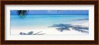 Framed Palm shadows, Laguna Maldives