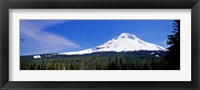 Framed Mount Hood OR USA