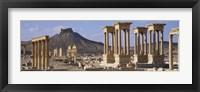 Framed Colonnades on an arid landscape, Palmyra, Syria