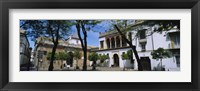 Framed Trees in front of buildings, Convento San Leandro, Plaza Pilatos, Seville, Spain