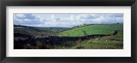 Framed Stone wall on a landscape, Republic of Ireland
