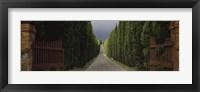 Framed Road, Tuscany, Italy,