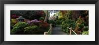 Framed Japanese Tea Garden, San Francisco, California, USA