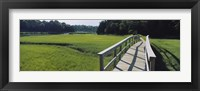 Framed Boardwalk in a field, Nauset Marsh, Cape Cod, Massachusetts, USA