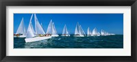 Framed Sailboats racing in the ocean, Key West, Florida