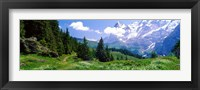 Framed Alpine Scene Near Murren Switzerland