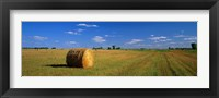 Framed Hay Bales, South Dakota, USA