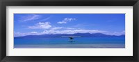 Framed Float Plane Hope Island Great Barrier Reef Australia