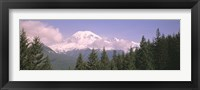 Framed Mt Ranier Mt Ranier National Park WA