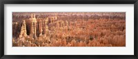 Framed Aerial View Of The Grand Canyon, Bryce Canyon National Park, Utah, USA