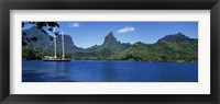 Framed Sailboats Sailing In The Ocean, Opunohu Bay, Moorea, French Polynesia