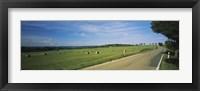 Framed Hay Bales in a Field, Germany