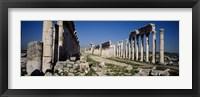 Framed Old ruins on a landscape, Cardo Maximus, Apamea, Syria